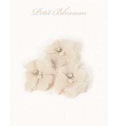 Petit Blossom
