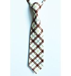 Cooper Neck Tie